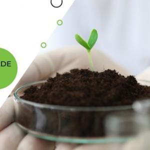 Licenciamento ambiental mg copam